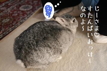 20080915_5.jpg