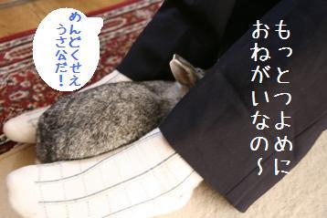 20080915_6.jpg