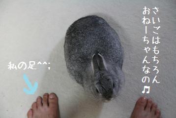 20080915_7.jpg