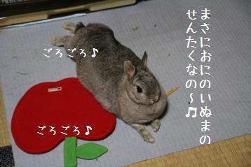 20080918_1.jpg