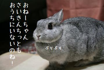 20080920_1.jpg