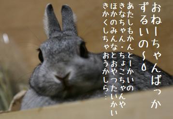 20080920_12.jpg