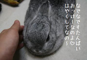 20080926_10.jpg