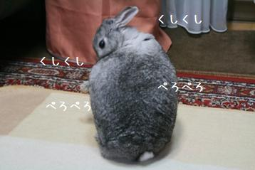 20080926_2.jpg