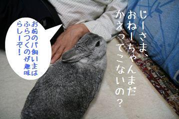 20080926_5.jpg