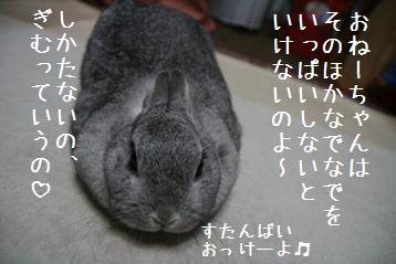 20081007_4.jpg