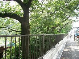 JR飯田橋駅付近外堀通り