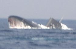 観艦式予行27日・潜水艦急浮上