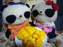 7月6日食べごろマンゴーさん