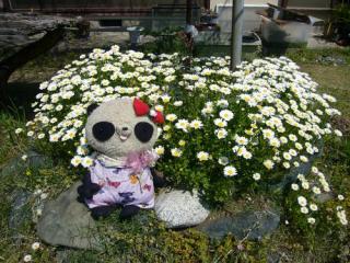 お花とおばぶ