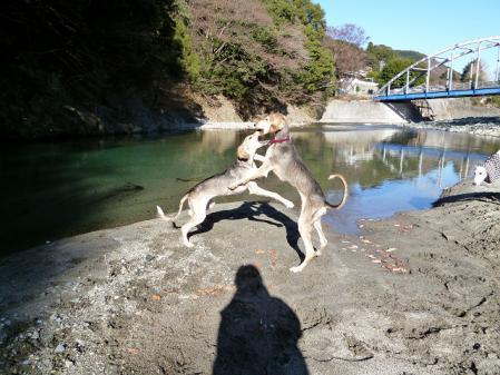 2011-12-27 okawara 027s