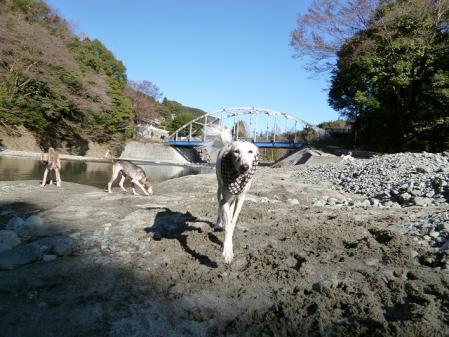 2011-12-27 okawara 022s