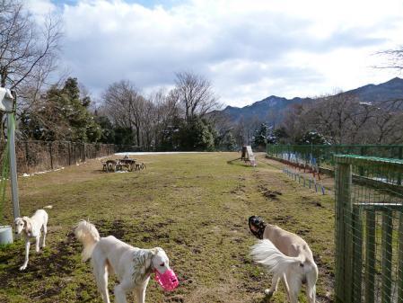 2012-02-18 相模湖プレジャーフォレスト 052s