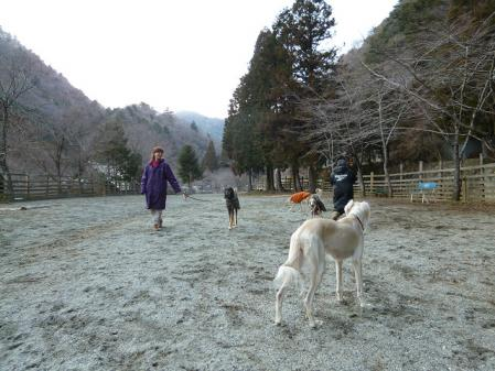 2012-03-25 西丹沢ウェルキャンプ 040s