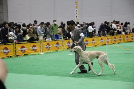 2012-03-31 2012FCIジャパンインター 097s