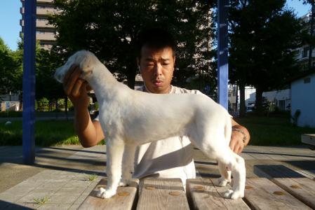 mizuiro-kun-20110914_P1000181_s.jpg