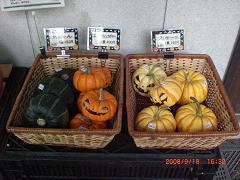 ハロウィンかぼちゃ15