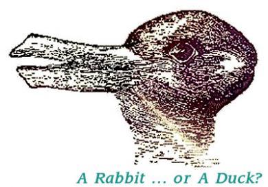 ウサギ?アヒル?どっちに見える?