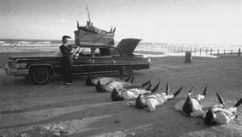 Leningrad_Cowboys_Go_America.jpg