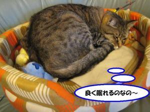 眠れるルーク