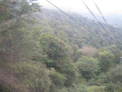 ロープ景色