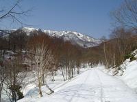 浦臼山へ 最初は林道歩き
