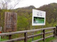 神居古潭 kamuy-kotan 橋は一度に100人以上は渡れませんよ