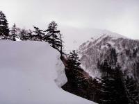 前富良野岳 尾根を攻めている途中。山頂が見えない