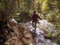 黄金山 旧道と新道の分岐には綺麗な水が流れてます。