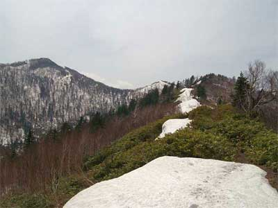 富良野西岳 6稜線を歩いて、富良野西岳へ向かう