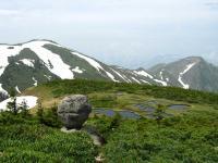 5 平ヶ岳0620 たまご石