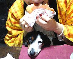 佐世保-バーガー-ハンバーガー-ログキット-くまもと-カフェ-cafe-グルメ-お菓子-パン-ケーキ-熊本