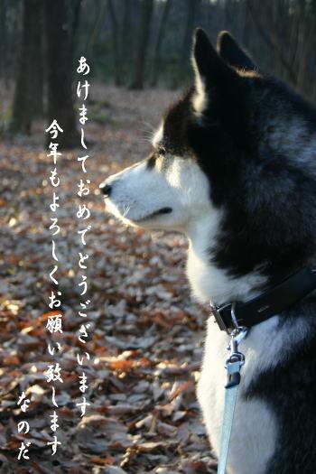 0101_4.jpg