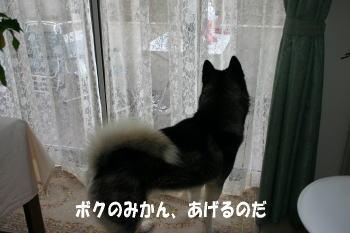 0125_4.jpg