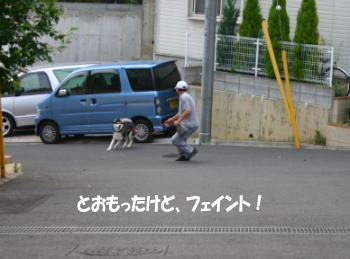 0530_5.jpg