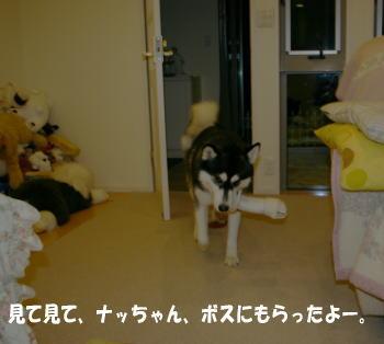 0619_3.jpg
