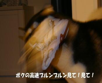 070501_3.jpg