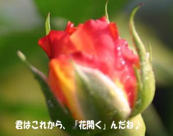 070516_5.jpg