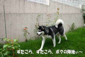 0709_3.jpg
