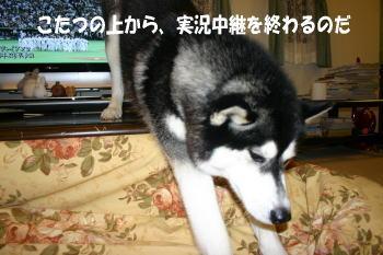 071002_6.jpg