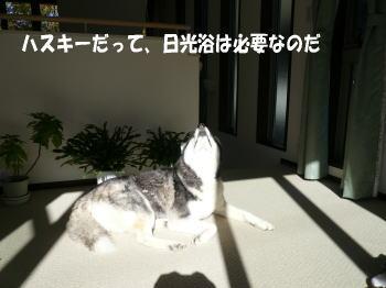 071130_2.jpg
