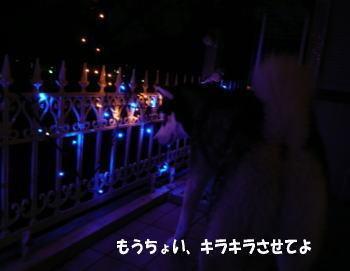 071201_2.jpg
