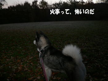 071207_3.jpg