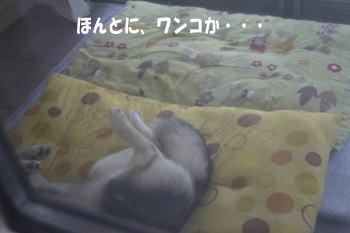 0720_4.jpg