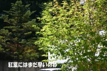 1009_7.jpg