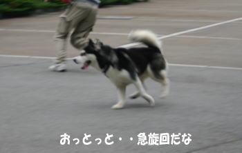1023_3.jpg