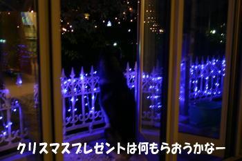 1205_2.jpg