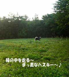 200606010539.jpg