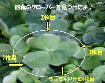 20070420_6.jpg