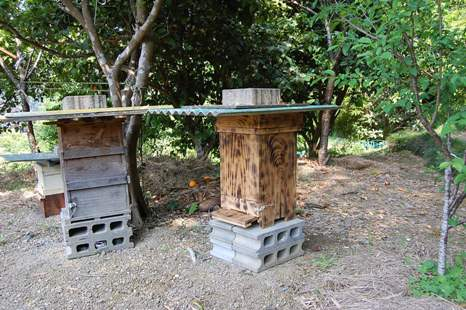 縦型巣枠巣箱